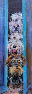 Nosey Barkers (18 x 6 inches)