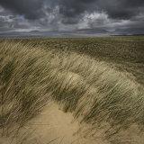 Luskentyre Dunes.