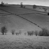 Staffordshire Moorlands