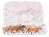 Horse scene(from LUCKY)004