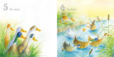 Which way next ? One Scruffy Duck - Templar Books 2018/19