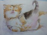 Kitten in heaven