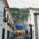 Festive Madeira