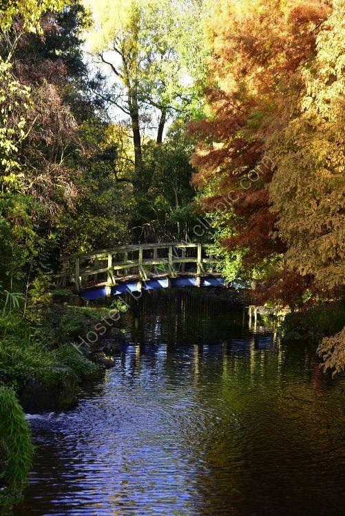 November in Regents Park