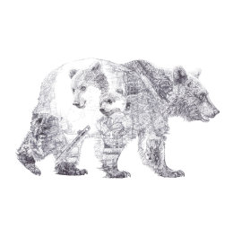 'Mummy Bear and Baby Bear', Brown Bears, 2013 Black Biro Drawing