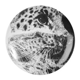 'Our Loss', Amur Leopard Limited Edition Fine English China Coupe Plate