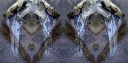'GANNETS', 2012 Original Black Biro Drawing and Digital Montage, 20cm x 42cm