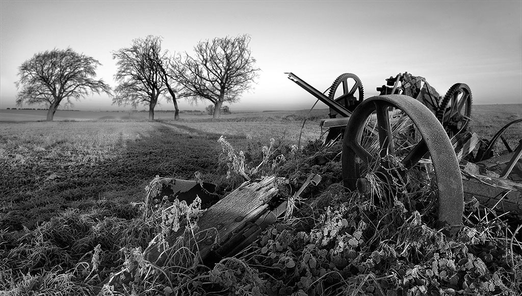 Wood iron and frost