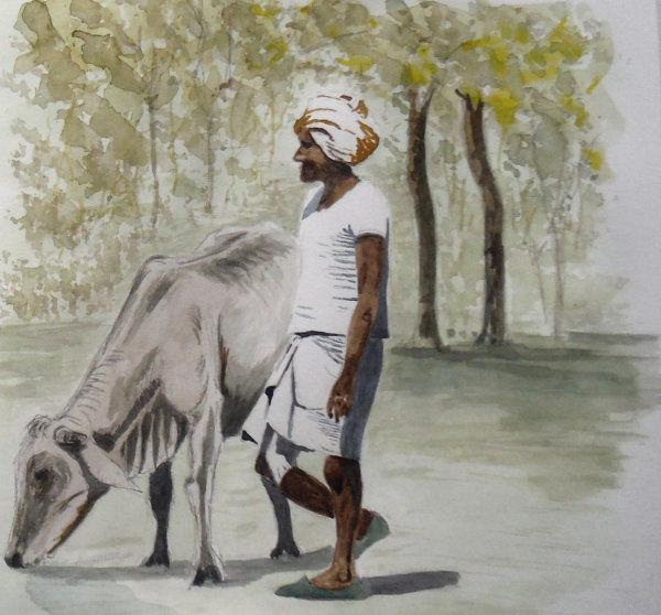 700917 Plains of India