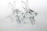 Hares Heads