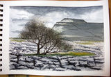 Ingleborough from Lead Mines Moss