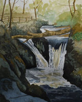 Ingleton Waterfalls