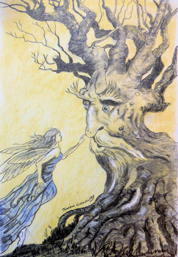 """Sketch copied from """"Tree - Spirit"""" by Sean A. Murray"""