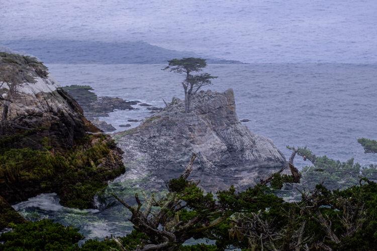 4770 Lone Cypress Carmel USA