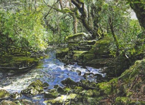 River Avon at Shipley Bridge