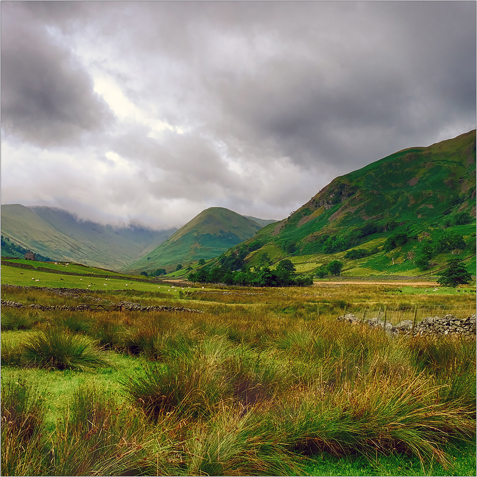 Clouds Gathering Over Martindale
