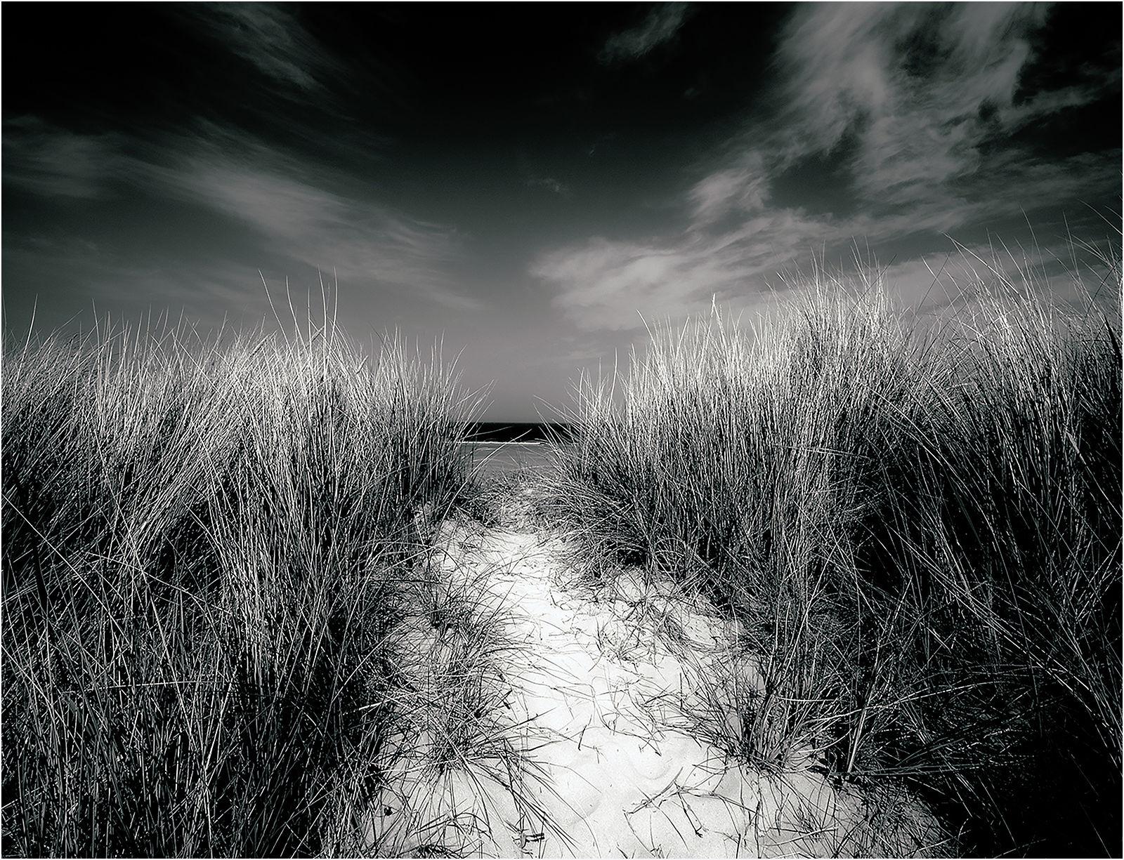 Footpath Too The Beach