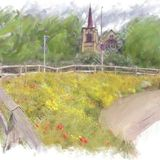 Wild flower bed, Brighouse