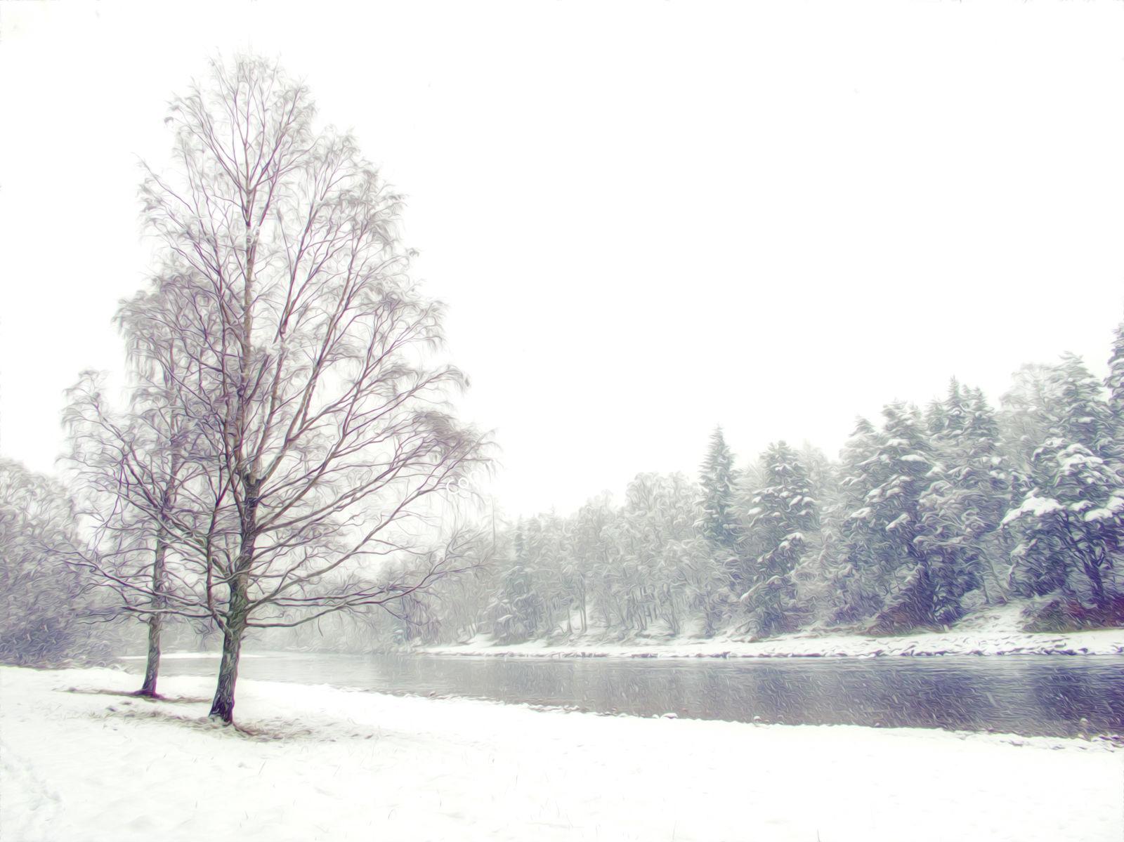 Snowy Dee