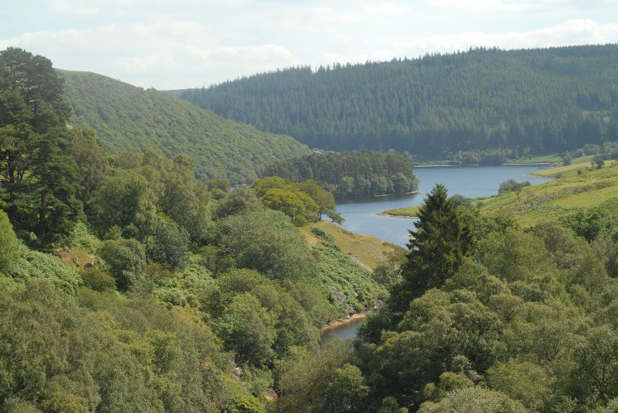 View from Graig Goch dam, Elan Valley