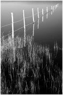 Kenfig Pool, Bridgend