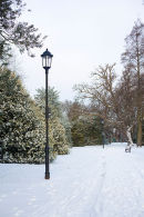 Abington Park in the snow