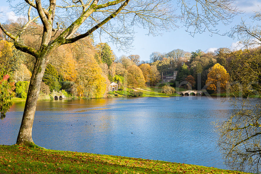 Across the lake, Stourhead (NT) in autumn. Not for sale
