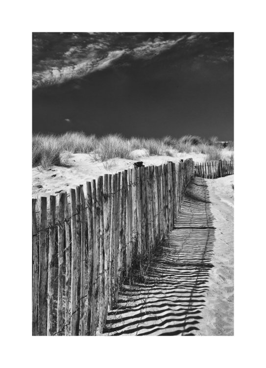 Sand Dunes near Lydd
