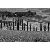 Tuscany Mono Landscape