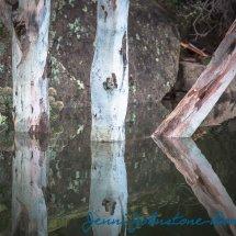 Lake Reflection 2