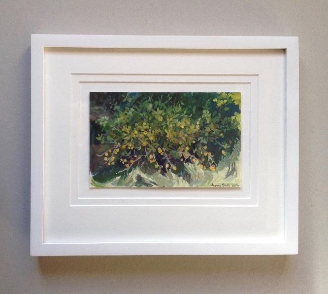 Crab apple (framed)