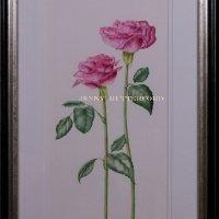 212-rose