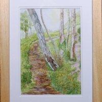 251-path