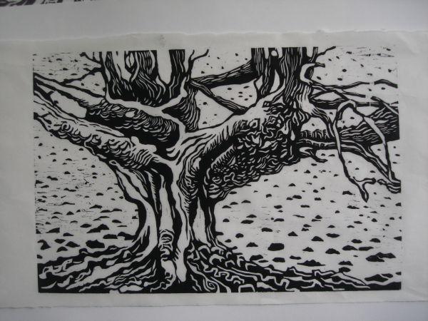 Frithsden Beech Woodcut