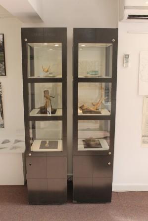 33 Cabinet of curiosities