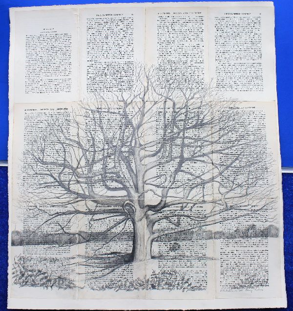 Northchurch Common Oak (SOLD)