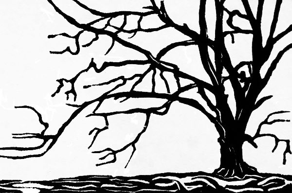 Small woodcut 20 Hassan's Beech