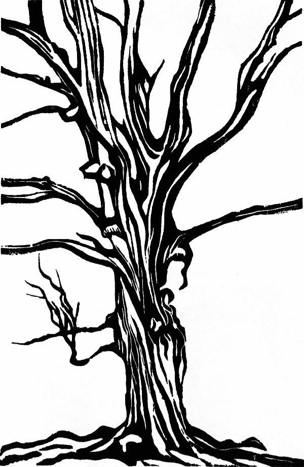 Woodcut 10 Twisitng Beech