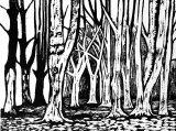 Woodcut 17 Beech Grove