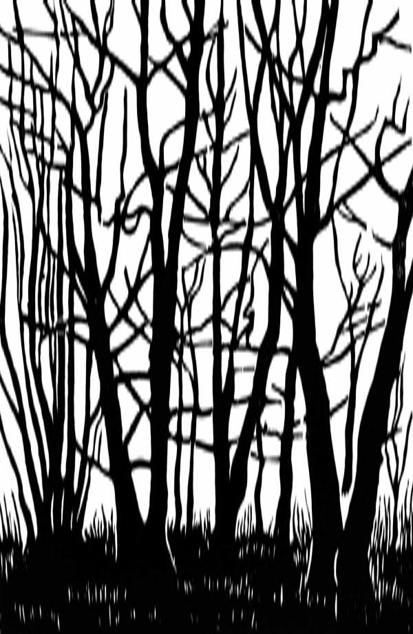 Woodcut 18 Birch Grove