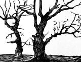 Woodcut 19 aldbury Road oaks