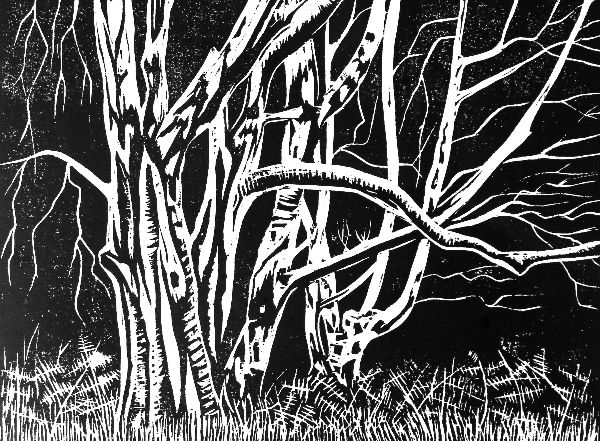 Woodcut 22 Coldharbour Birches