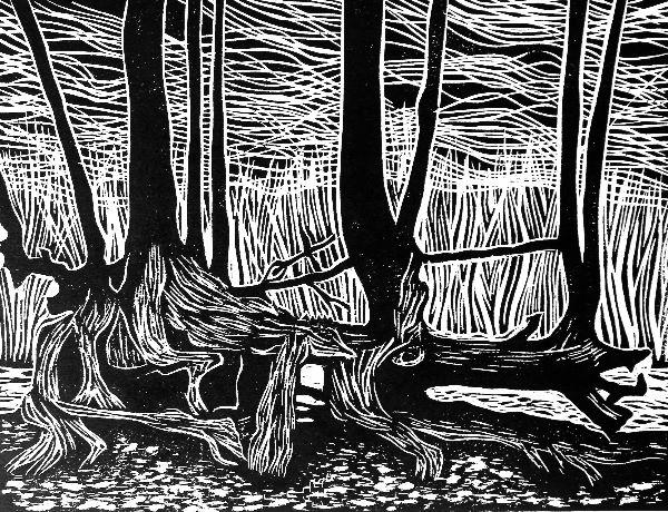 Woodcut 27 Dragon tree whole