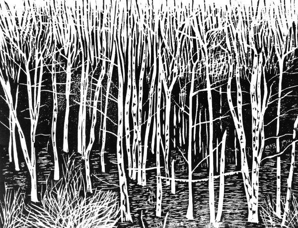 Birch edge