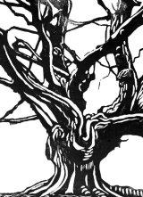 Woodcut 3 Great Beech 3