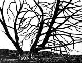Woodcut 7 Kissing trees