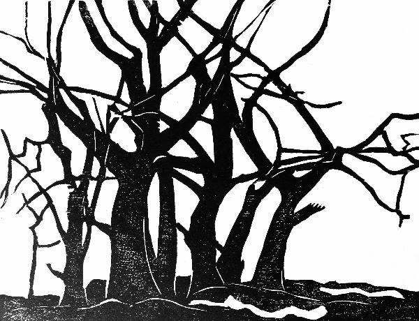 Woodcut 9 Boundary Beeches