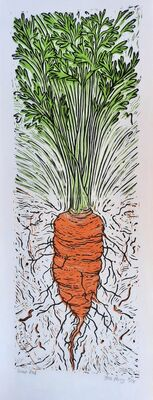 Giant red Carrot
