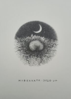 Hibernation: second in the series