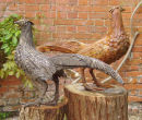 Pheasants - cold cast bronze and cold cast iron. For Sale at £220.00 each